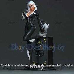 Catwoman 3D Printing Model Standing 1/6 Figure Model Kit Unpainted H32cm GK