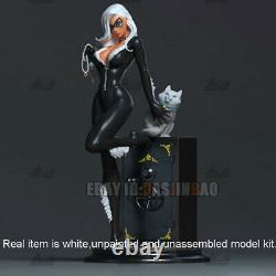 Catwoman With Safe Box Unpainted 1/6 Figure 3D Print Model Unassembled H32cm GK