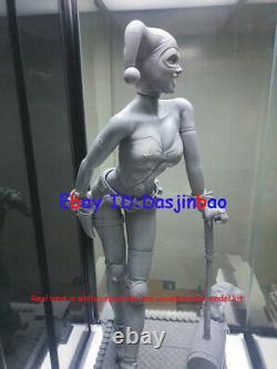 Harley Quinn 1/6 Figure 3D Print Model Kit Unpainted Unassembled 33cm 2 Heads