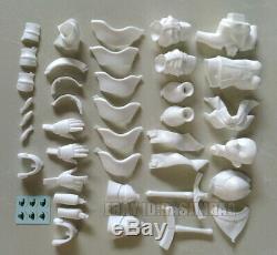 Unpainted 1/4 VOLKS saber Lily Resin Figure Model Kit Unassembled Garage Kit